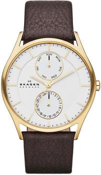 Мужские часы Skagen SKW6066