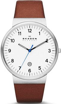 Мужские часы Skagen SKW6082